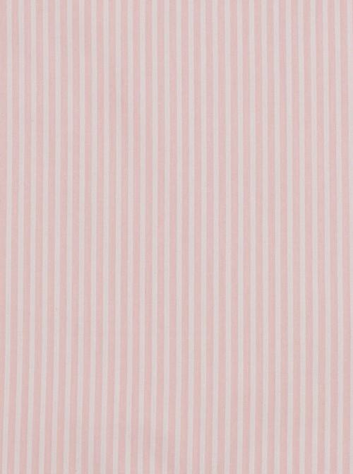Linea rosa